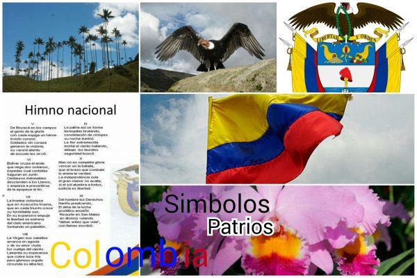 Historia de la colombiana 7