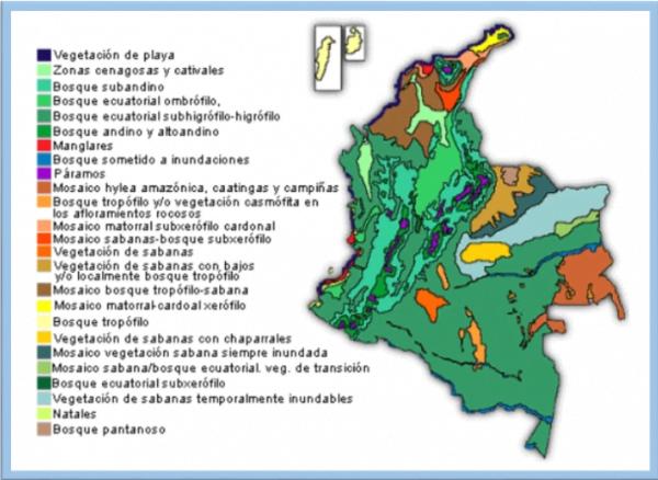 Mapa ecosistemas de Colombia, imagen tomada de internet.