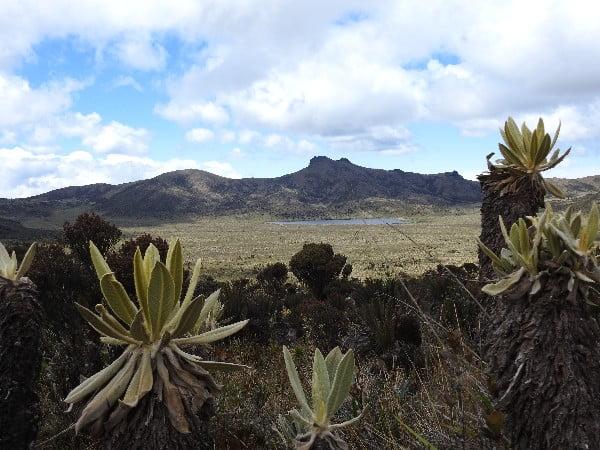 Territorio, Macizo Colombiano - Fotografía tomada de internet