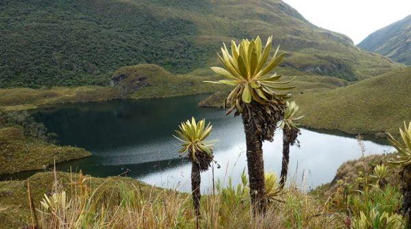 Laguna las Mellizas, Parque Nacional Natural Las Hermosas; Fotografía tomada de internet