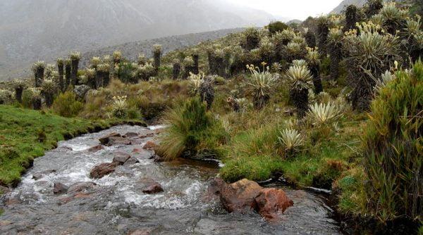 Hidrografia, PNN El Cocuy, Colombia; Fotografía tomada de internet.