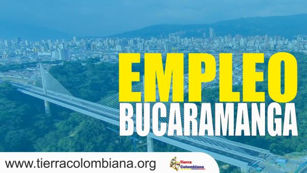 empleo en bucaramanga