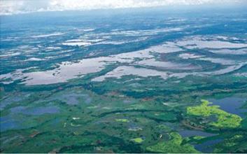 Sistema Delta Estuarino del Rio Magdalena; Fotografía tomada de internet.