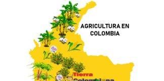 agricultura en colombia