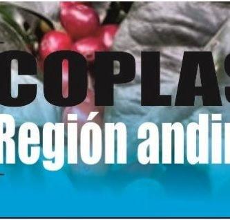 Coplas de la region andina