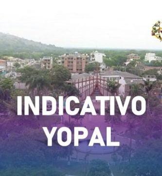 indicativo yopal