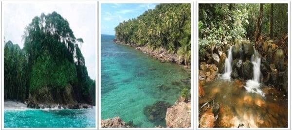 ecosistemas de la region insular